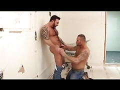 Furry Musclebears Suck and Tear up