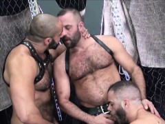 Suspended hold to jerks out cum in bareback trio